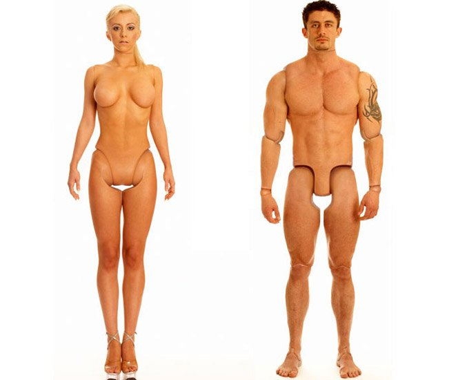 Barbie e Ken realistas