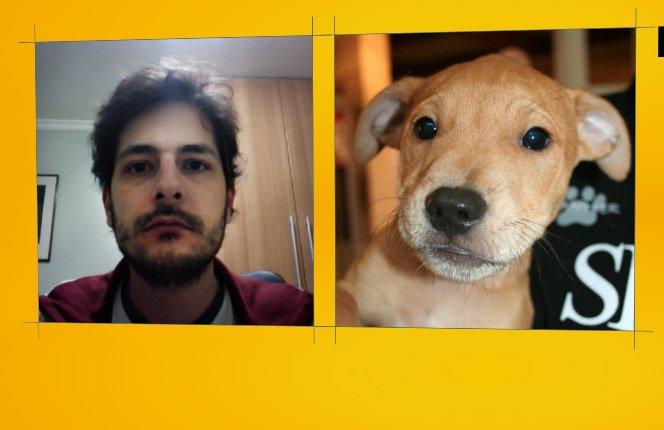Descubra qual Cachorro é a Sua Cara