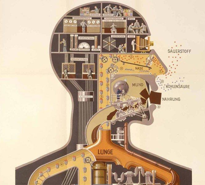 Nosso Corpo é uma Máquina