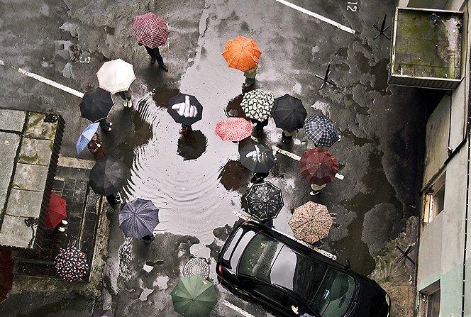15 guarda-chuvas cheios de design e criatividade
