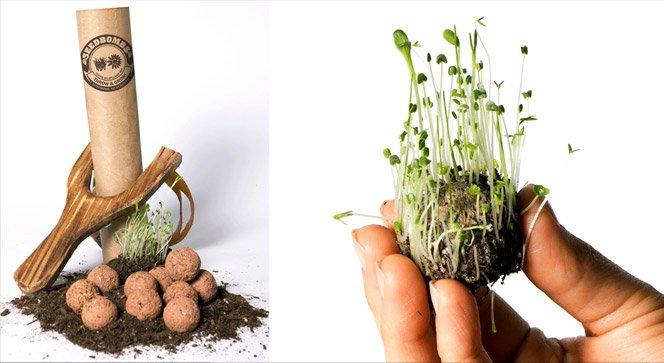 Bomba de sementes e a jardinagem de guerrilha