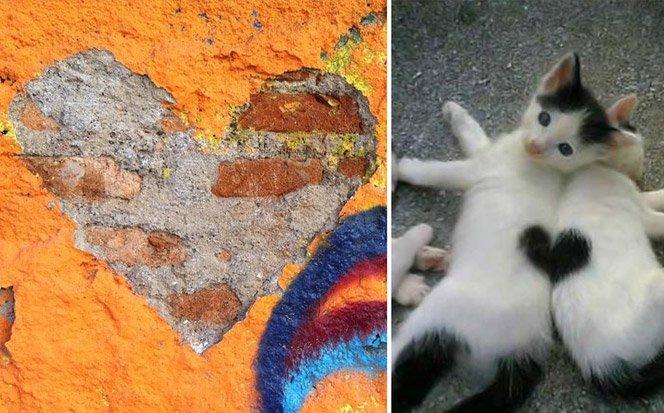 Projeto reúne fotos de corações involuntários que aparecem em nosso cotidiano