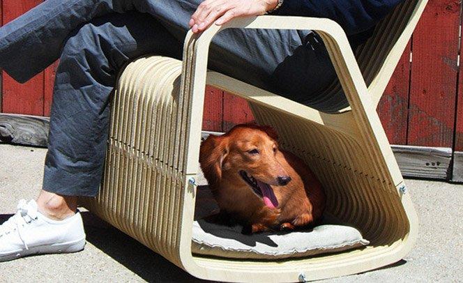 Cadeira de balanço pra você e pro seu pet