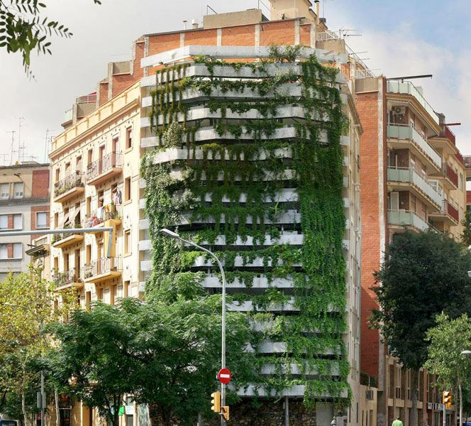 Prédio transforma lateral bege em um jardim vertical