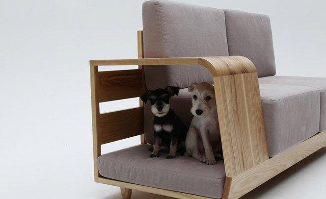 Sofá para cachorros e humanos