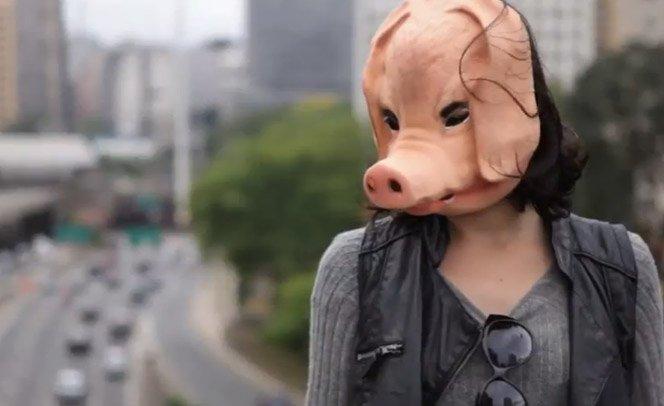 Revolução dos Porcos busca soluções para os problemas urbanos do dia-a-dia