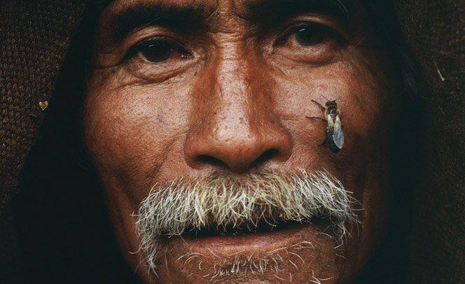 Fotógrafo registra a saga dos caçadores de mel dos Himalaias