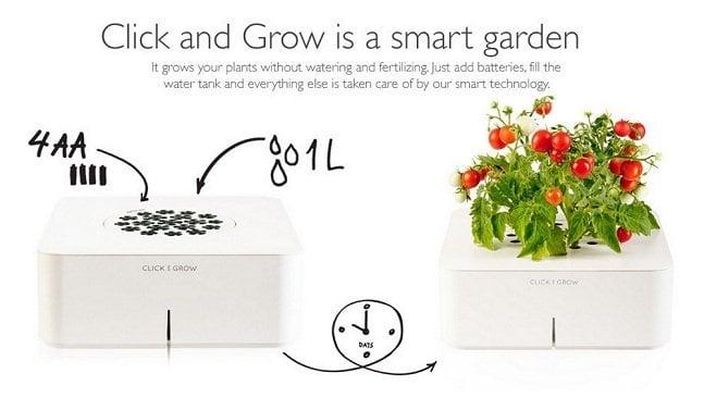 Vaso eletrônico: ele rega, fertiliza e cuida da sua planta para você