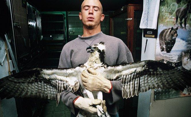 Fotógrafa retrata a forte conexão que existe entre animais e humanos