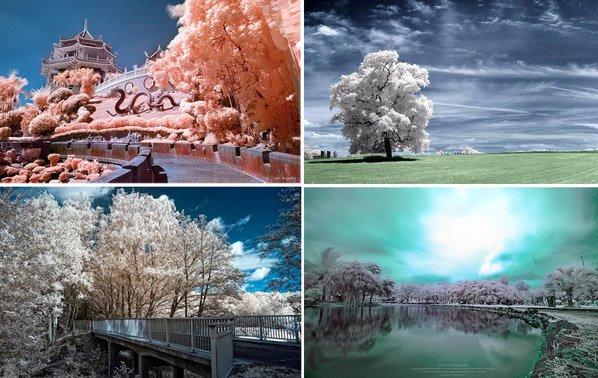 A magia das fotografias com filtro infravermelho