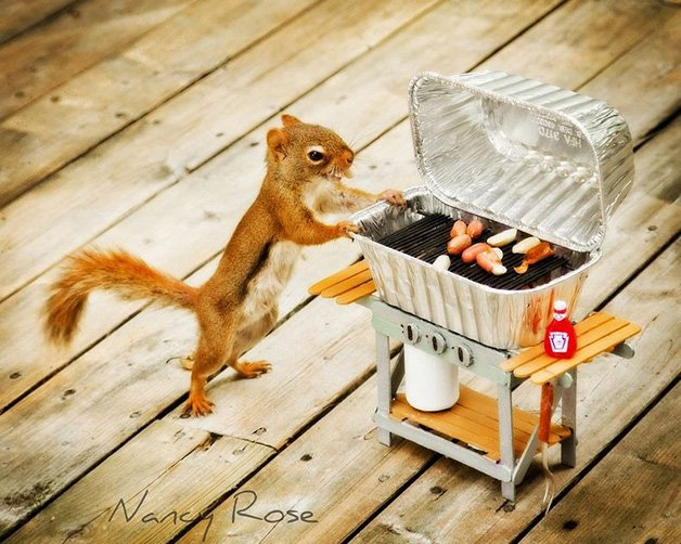 NancyRoseSquirrels12
