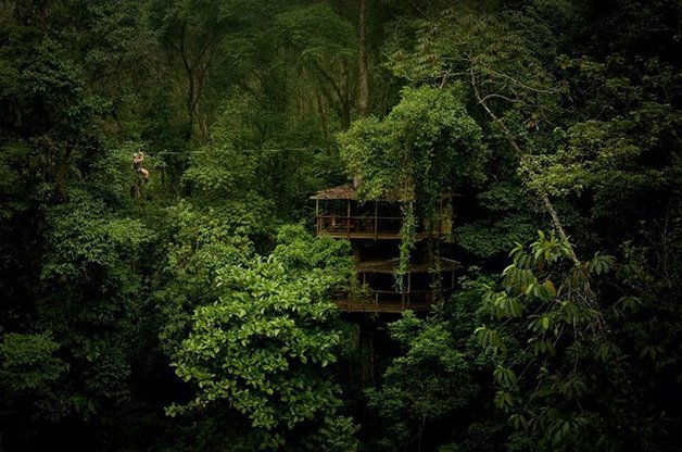 SustainableTreeHouse1