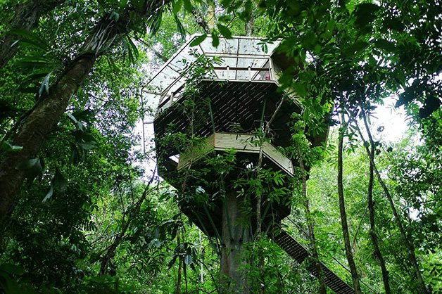 SustainableTreeHouse5