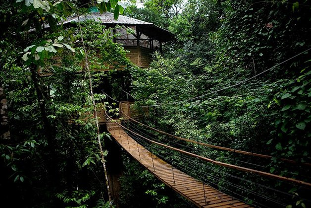 SustainableTreeHouse6