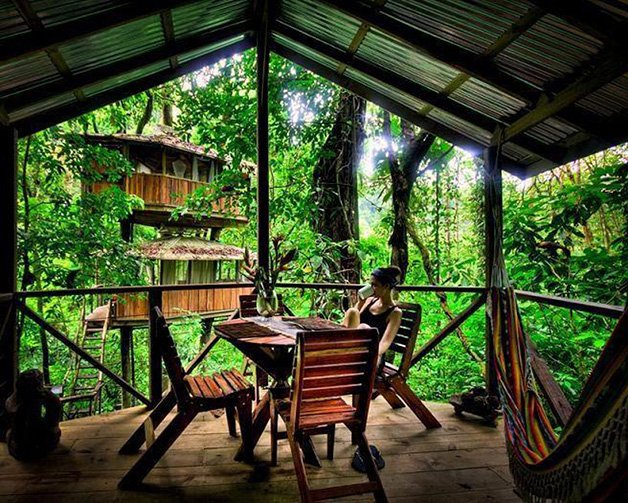 SustainableTreeHouse7