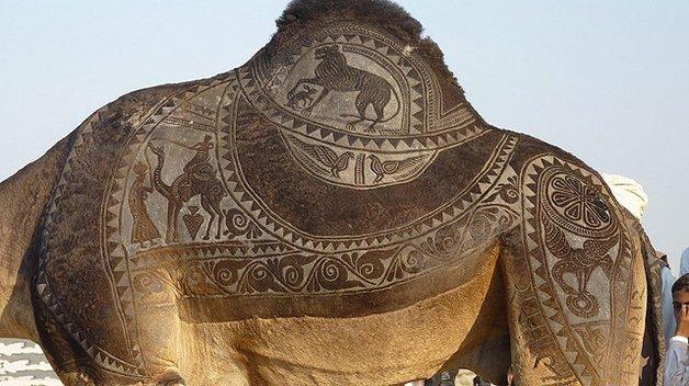 CamelArt3