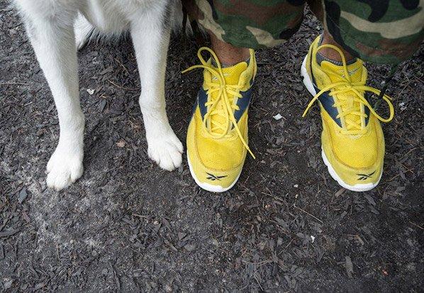 Ensaio fotográfico criativo mostra pés de cães e seus donos