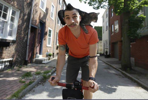 gato_bike10