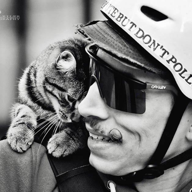 gato_bike16