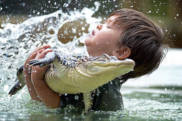 Com apenas 3 anos, ele é o domador de crocodilos mais jovem do mundo