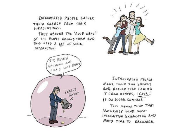 Guia ilustrado mostra como interagir com pessoas introvertidas