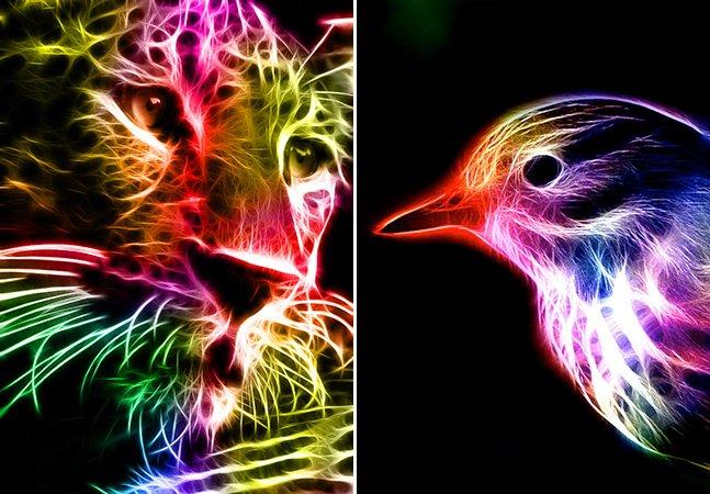 Série mostra retratos de animais como explosões elétricas de cor