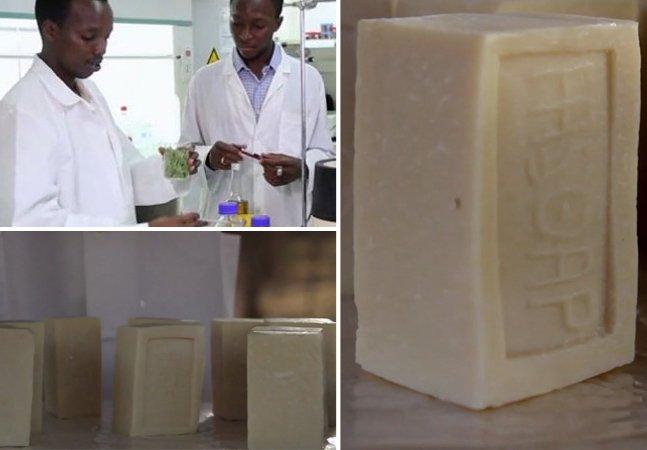 Jovens estudantes criam sabonete capaz de repelir o mosquito da malária