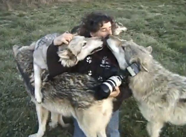 WolfPark3