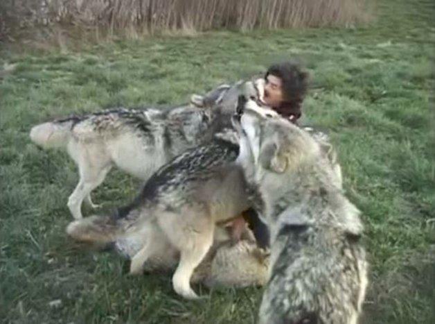 WolfPark4