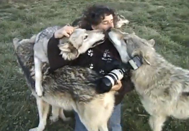 Conheça o trabalho do fotógrafo que é amigo íntimo dos lobos