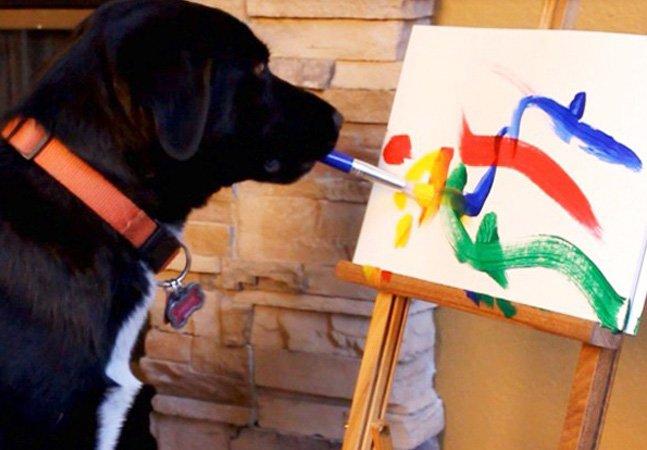 Cão pinta quadros e lucro da venda é doado pra instituição de apoio a animais