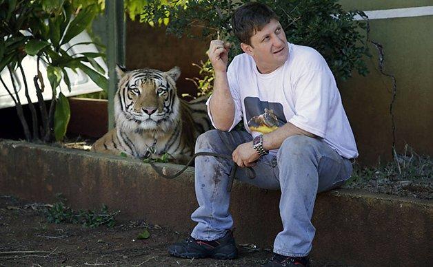 TigerFamily3