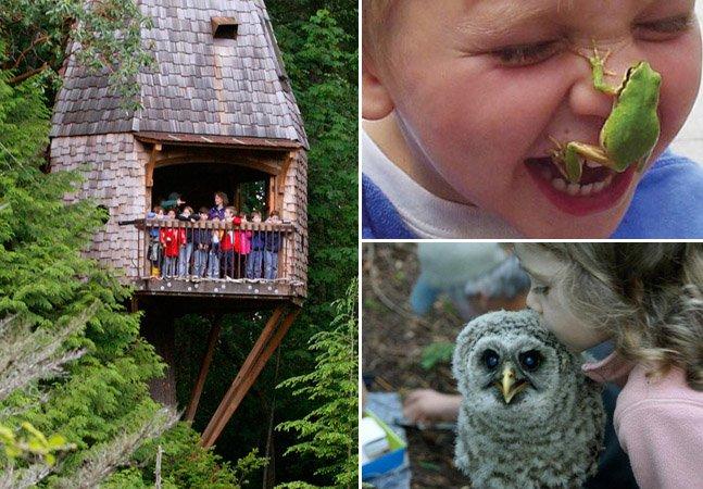 Conheça a escola onde as aulas acontecem dentro da floresta
