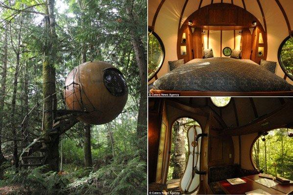O primeiro hotel esférico do mundo fica em cima de uma árvore