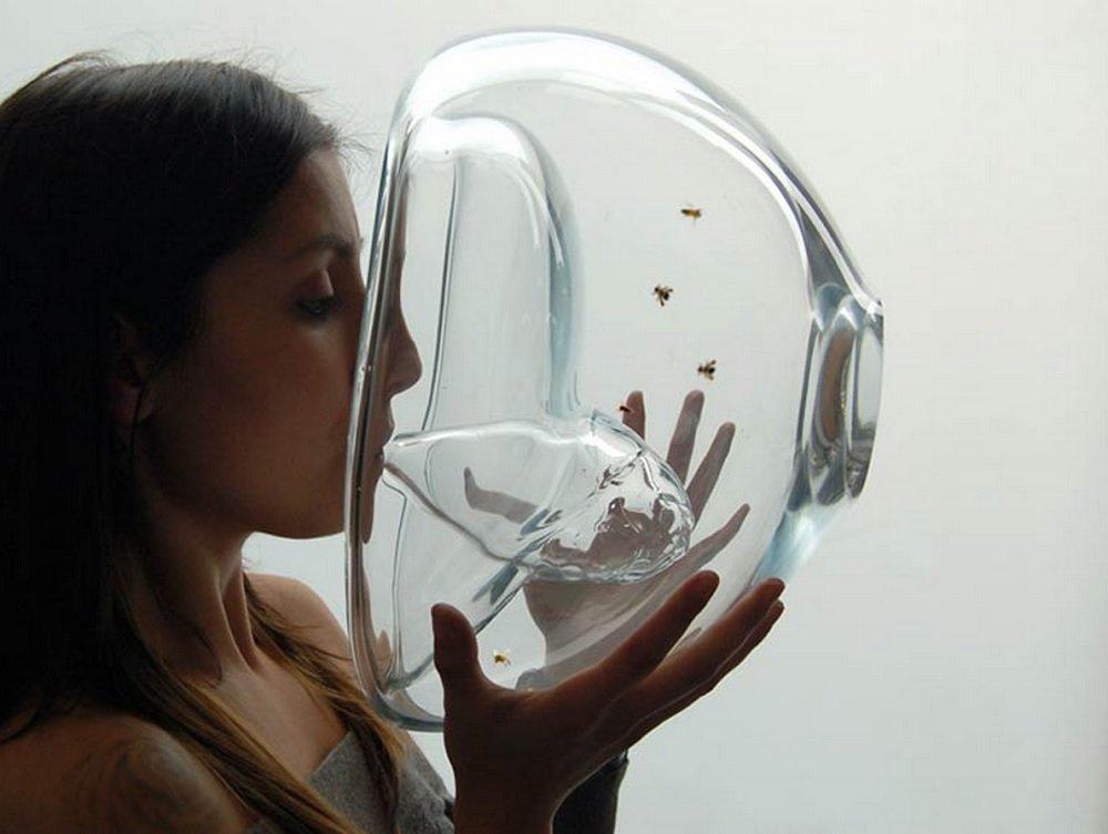Abelhas treinadas detectam câncer através do poder do olfato