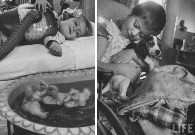 Série de fotos mostra terapia com animais em um hospital em 1956