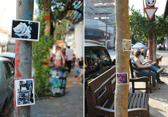 Pegue a foto: Intervenção urbana espalha fotos por SP para quem quiser pegar