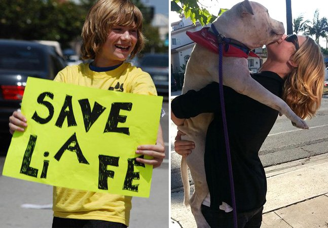 Jovem ator cria ONG e salva da morte mais de 20 mil animais de estimação