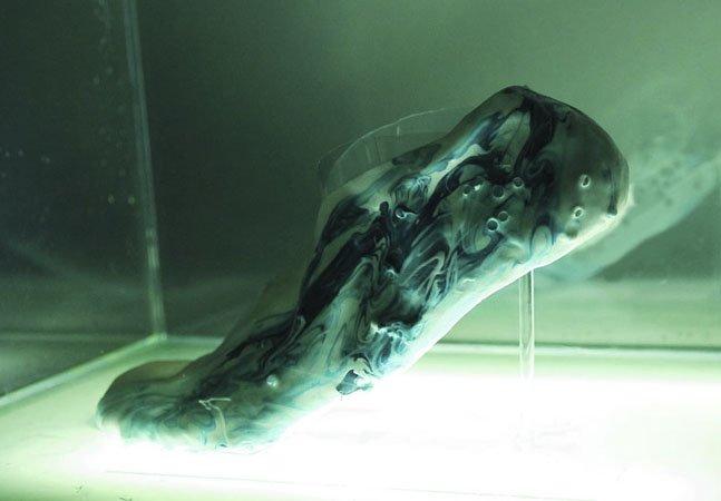 Conheça os excêntricos tênis  biológicos que usaremos em 2050