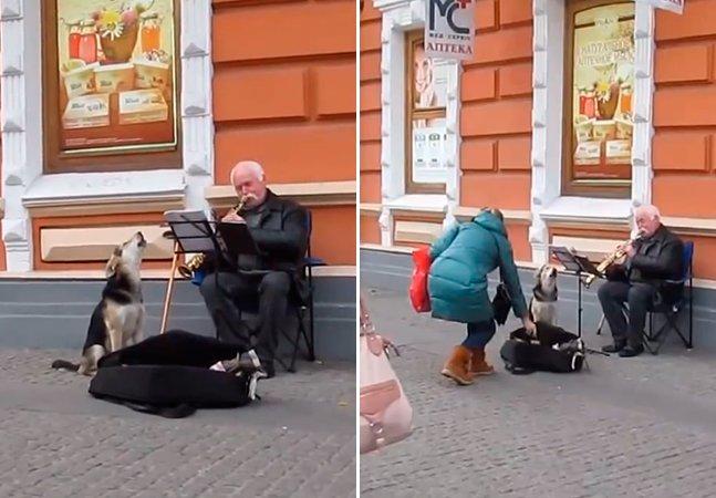 Cão abandonado ajuda músico de rua e os dois viram parceiros de trabalho