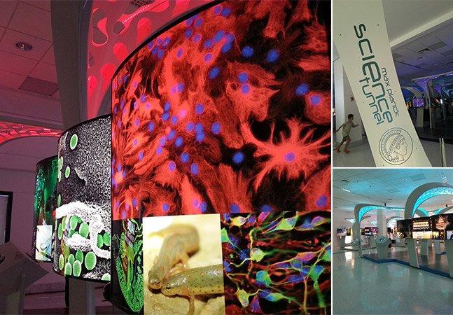 Conferimos em primeira mão a fantástica exposição Túnel da Ciência em SP