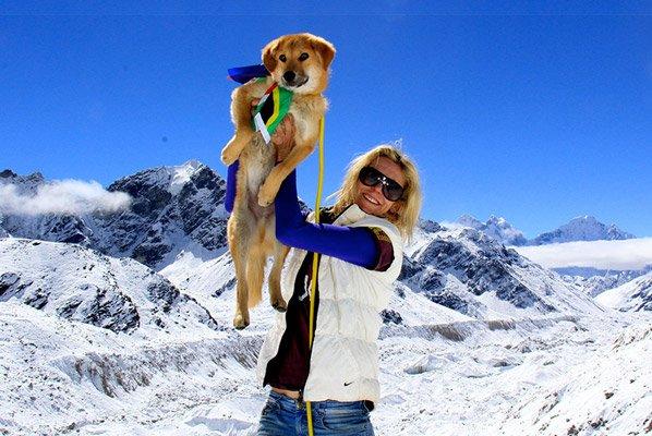 Ele foi resgatado e se tornou o primeiro cão do mundo a escalar o Monte Everest