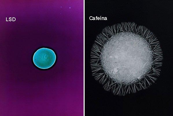 Artista analisa drogas no microscópio e cria série de fotos mostrando-as de perto