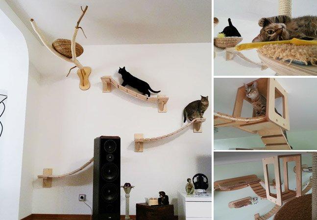 Empresa transforma espaços da casa em playgrounds suspensos para gatos