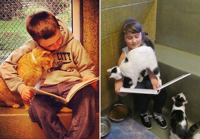 Se você gosta de gatos e crianças, precisa conhecer esse método inovador de ensino