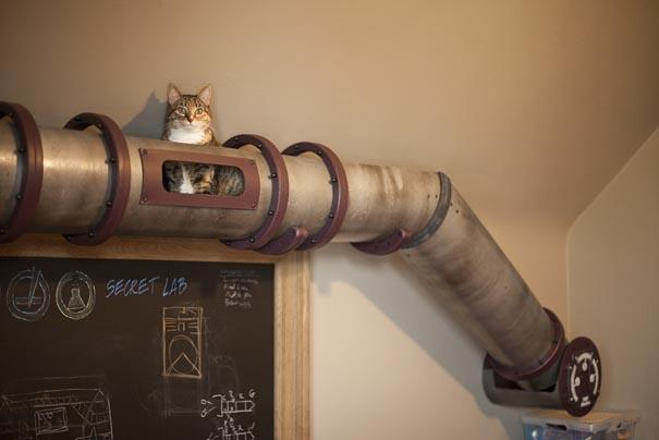 CatFurniture7