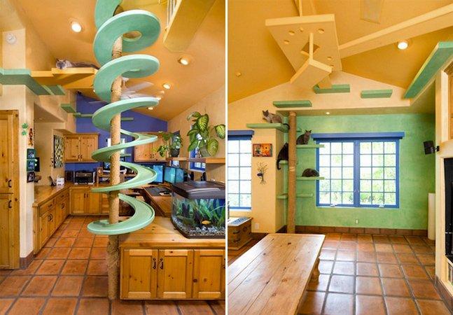 Homem gasta $35 mil pra transformar sua casa num playground para gatos
