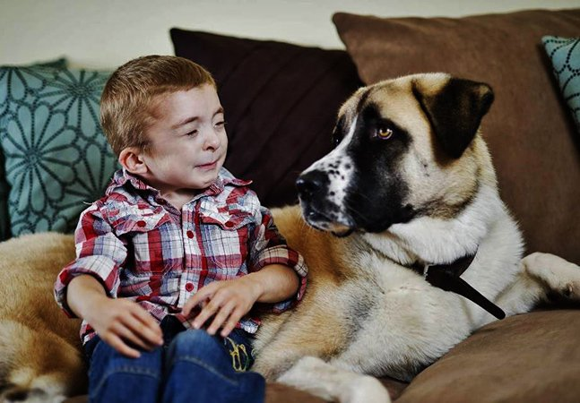 Como um cão de três patas devolveu a alegria de viver a uma criança com uma doença rara
