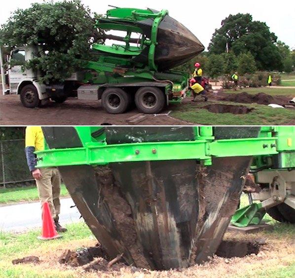 Australianos criam máquina que vai salvar milhões de árvores