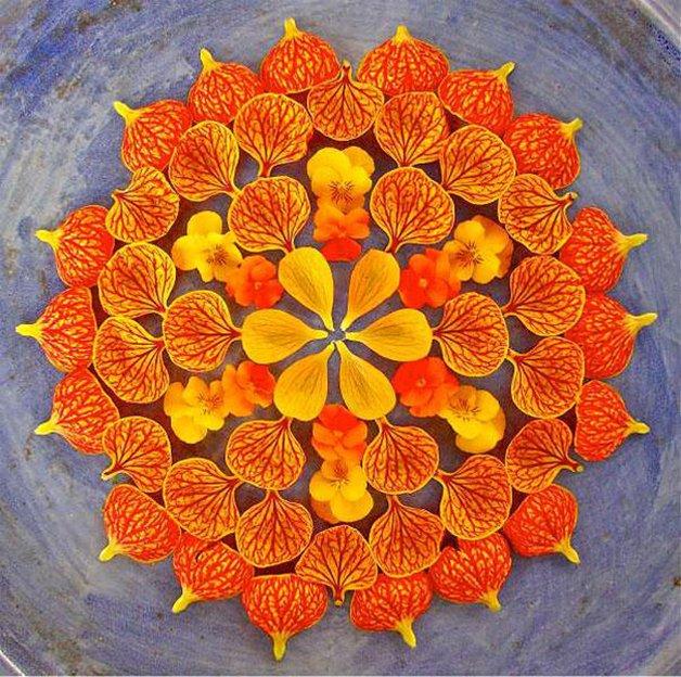 danmala-flower-mandala-kathy-klein-24
